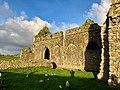 Graveyard, Hore Abbey, Caiseal, Éire - 45861599084.jpg