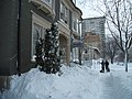Groundhog Day 2011 Blizzard (5413228001).jpg