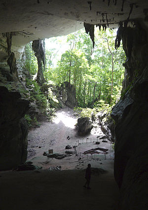Niah National Park - An archaeological site at the Painted Cave (Kain Hitam). Painted Cave is a small but archaeologically significant cave  located south of the Niah Great Cave complex where ancient burial sites and cave paintings can be seen here.