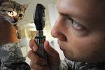 Guantanamo Veterinary Care DVIDS299638.jpg