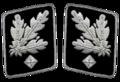 HH-SS-Gruppenfuhrer-Collar.png
