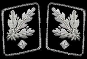 Gruppenführer - Gorget patches  1942-1945 (Allgemeine SS and Waffen-SS)