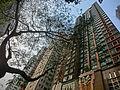 HK 大坑 Tai Hang 浣紗街 55 Wun Sha Street 雍藝軒 Villa d' Arte facade n trees Apr-2014.JPG