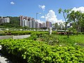 HK 屯門河 Tuen Mun River outdoor terrace garden green trees July 2016 DSC.jpg