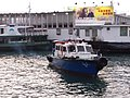 HK TST 尖沙咀 Tsim Sha Tsui 梳士巴利花園 Salisbury Garden 維多利亞港 Victoria Harbour March 2020 SSG 12.jpg