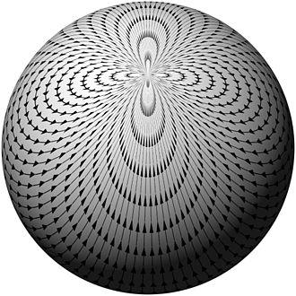 Hairy ball theorem - Image: Hairy ball one pole