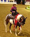 Half Arabian Ladies Western Sidesaddle (2669571938).jpg
