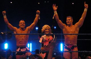 The Hart Dynasty Professional wrestling stable