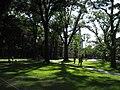 HarvardYardGreen24June07.jpg