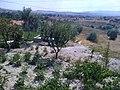 Hasan Kalesinden Bakis - panoramio.jpg