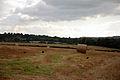 Hay Bales (1443368943).jpg