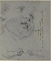 Head of a Woman (recto); Head of a Child, Study of Children's Forearms (verso) MET 1975.131.25 VERSO.jpg