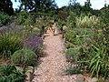 Herb garden at Dyffryn Fernant - geograph.org.uk - 661509.jpg
