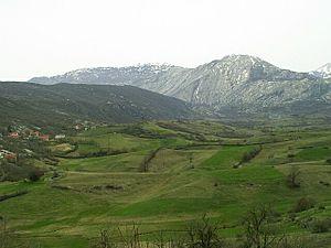 June 1941 uprising in eastern Herzegovina - Image: Hercegovina, zvlneny okraj Gackeho polje