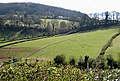 Hillside with long fence - geograph.org.uk - 755289.jpg