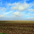 Horizon and sky - Flickr - Stiller Beobachter.jpg