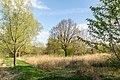 Horn-Bad Meinberg - 2015-05-04 - Stinkebrink (14).jpg