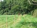 Horse paddock - geograph.org.uk - 974631.jpg