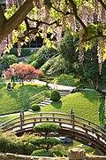 Huntington Japanese Garden.jpg
