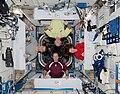 ISS-27 American crew quarters.jpg