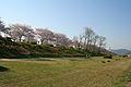 Ichikawa river 01.jpg