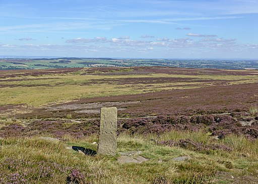 Ilkley Moor (29035730900)
