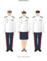 Infantería de marina diario B.png