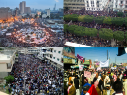 Infobox collage for MENA protests