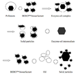 Interaction mechanism of BERO™ biosurfactant and pollutants.png