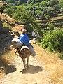 Ioulis 840 02, Greece - panoramio (12).jpg