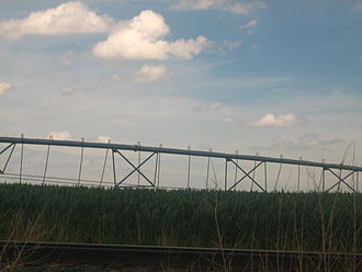 Muleshoe, Texas - Irrigated fields between Muleshoe and Farwell