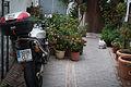 Istan, Spain Motorcycle (12195973333).jpg