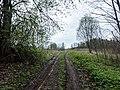 Izvalta parish, Latvia - panoramio - BirdsEyeLV (8).jpg