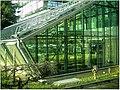 January Frost Botanic Garden Freiburg Gen Laboratories - Master Botany Photography 2014 - series Germany Saphir pictures - panoramio.jpg