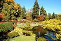 Japanese Garden (15259347073).jpg