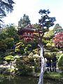 Japanese Tea Garden (4594245099).jpg