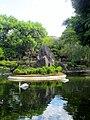 Jardim Japonês Jani Pereira (4).jpg