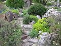 Jardin botanique Besançon 033.jpg
