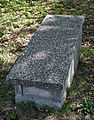 Jewish cemetery Zelechow IMGP3161.jpg
