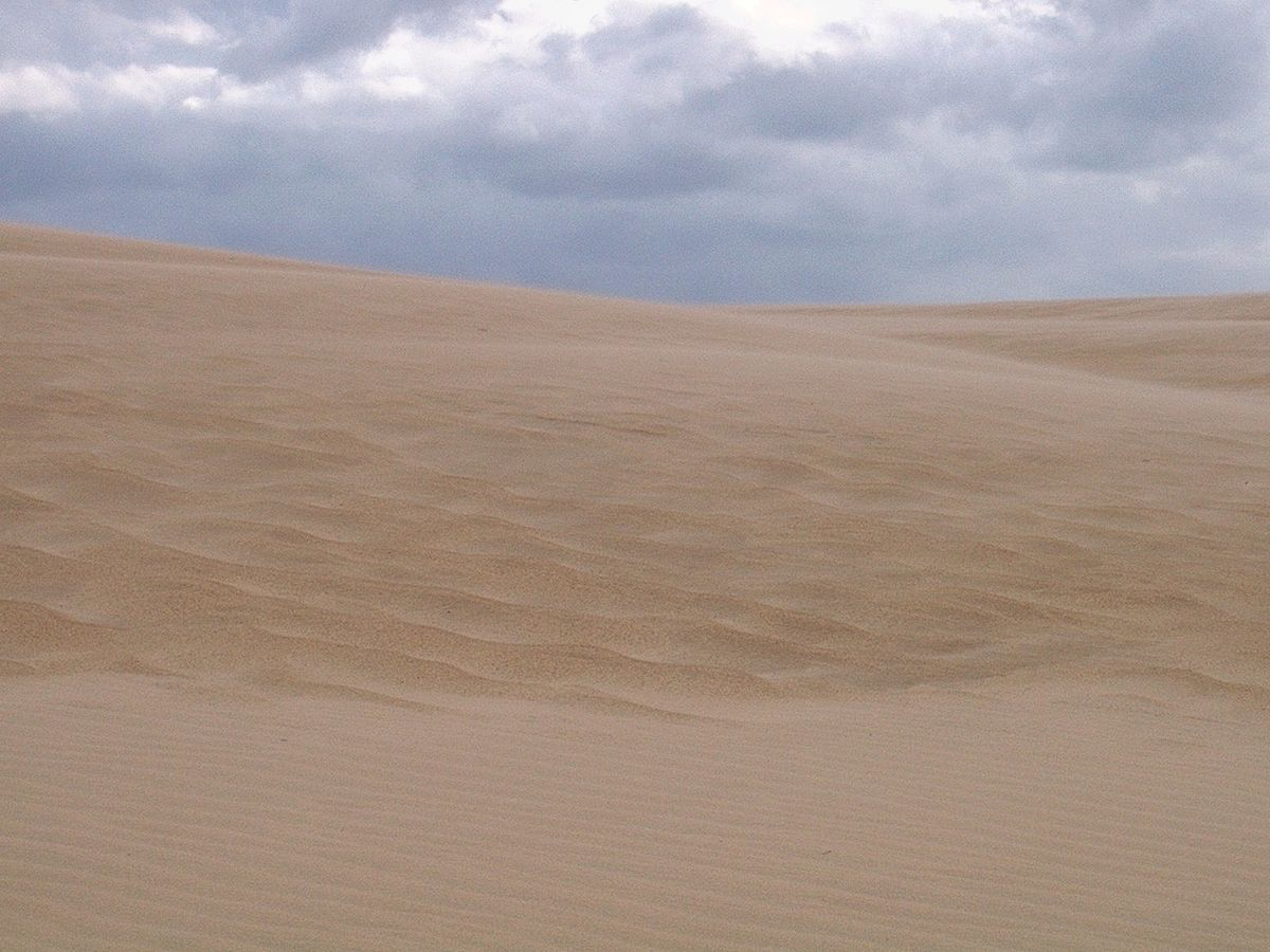 Red Sand Blue Sky Pdf
