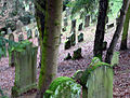 Juedischer Friedhof Oberoewisheim 04 fcm.jpg