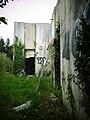 Jungle (9084740976).jpg
