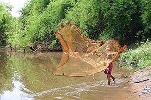Fishing industry in Laos - Net fishing