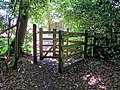 Kissing gate in Gernon Bushes Nature Reserve, Theydon Garnon, Essex.jpg