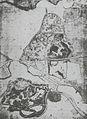 Klein-Glienicke ParkplanMeyer 1845 sw.jpg