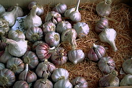 Knoblauch Allium sativum in a store.JPG