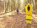 Koenigswald - Naturschutzgebiet (Nature Reserve) - geo.hlipp.de - 34711.jpg