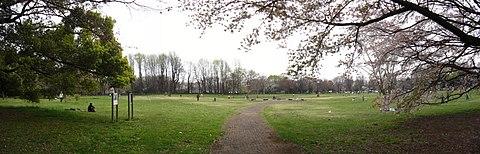 公園 小金井
