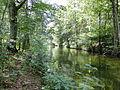 Kogel Siedlung Schaalseekanal 2011-07-16 059.JPG