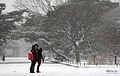 Korea Seoul Snow 16.jpg